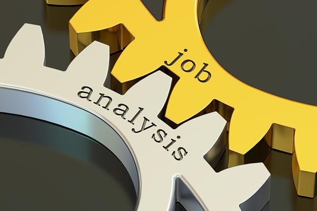 Critical Task Analysis – 8H (SCS)